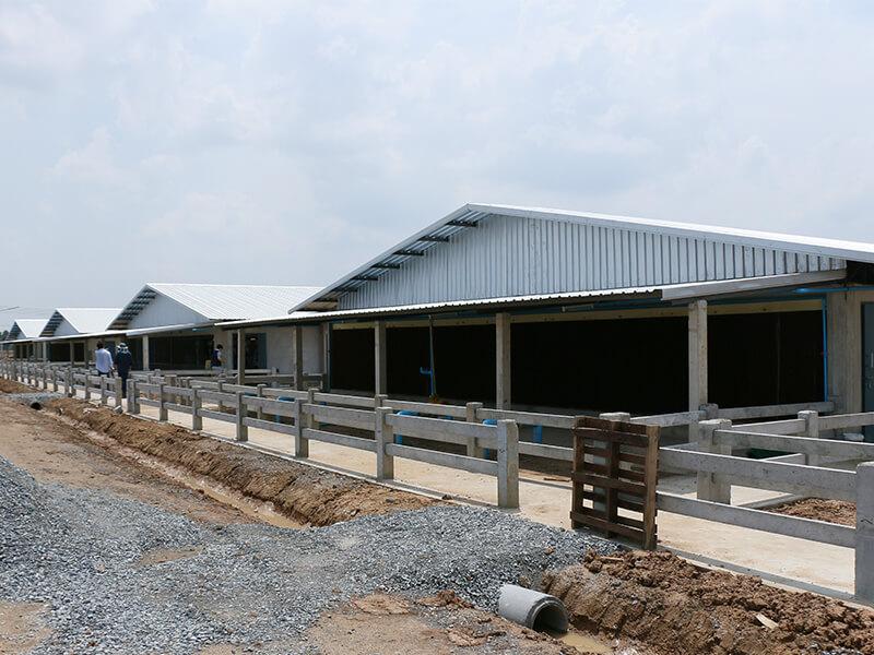 Pig Farm Design